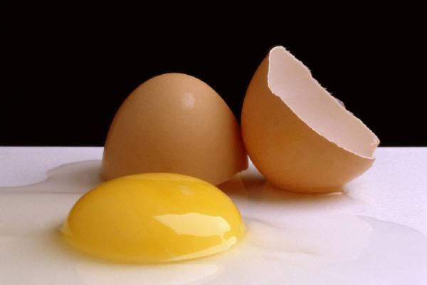 Kỹ thuật nuôi gà đẻ trứng thương phẩm